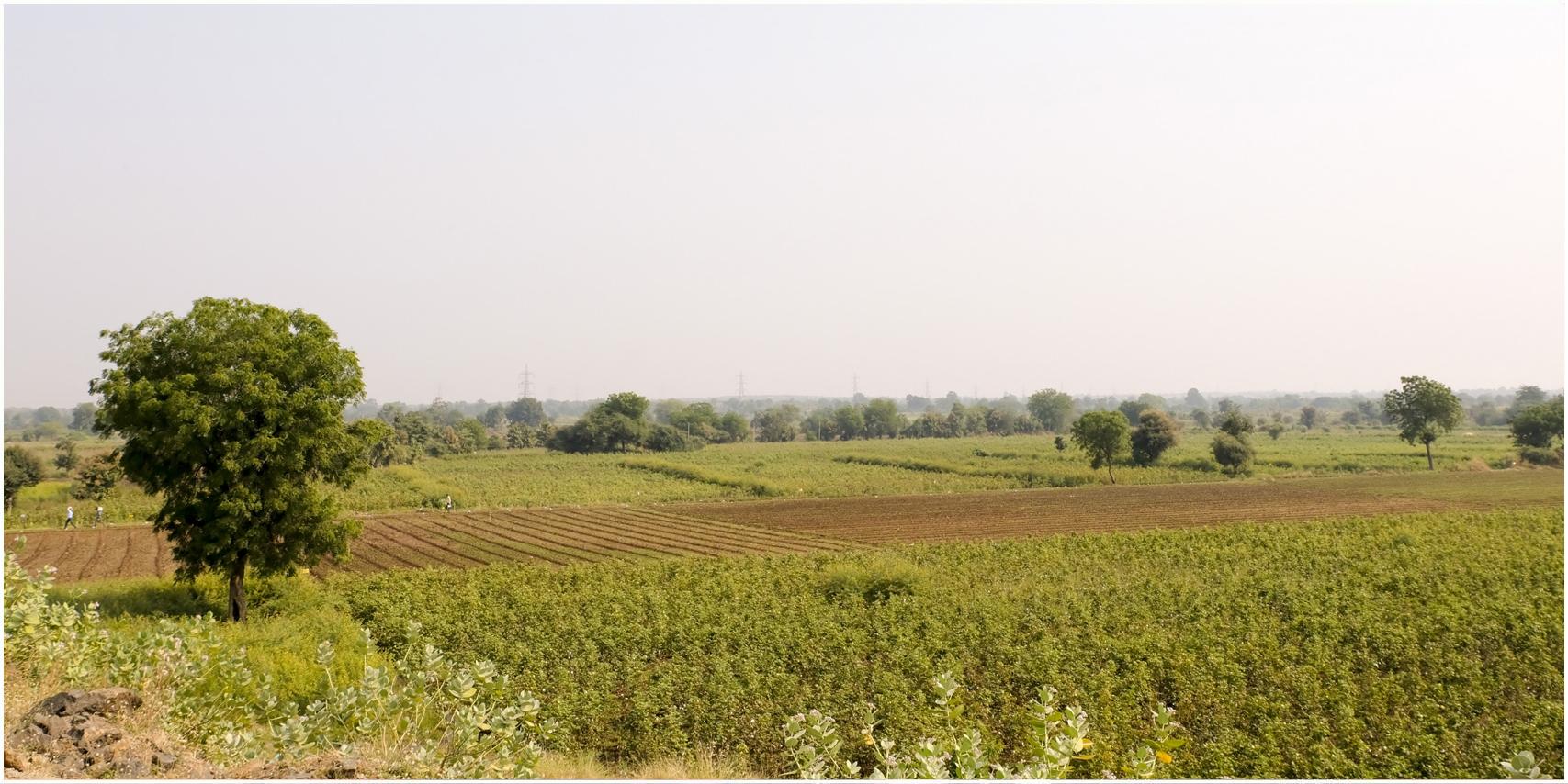 Was bedeutet eigentlich umweltschonender Anbau?